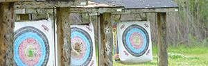 target-static300
